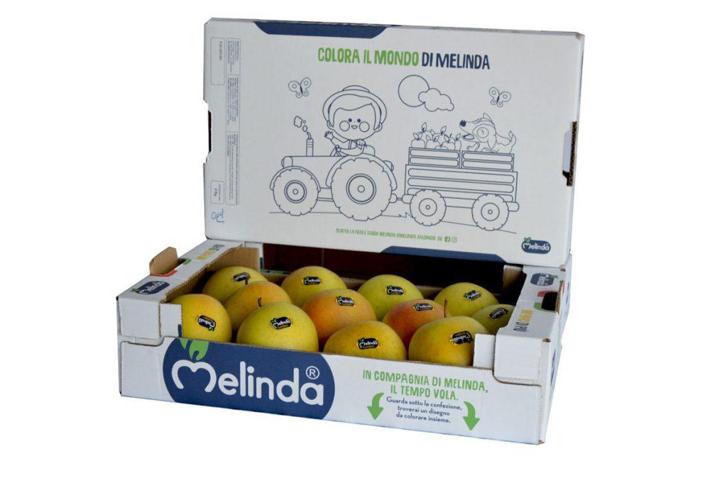 Melinda, Ghelfi Ondulati, il tempo vola, scatole, frutta
